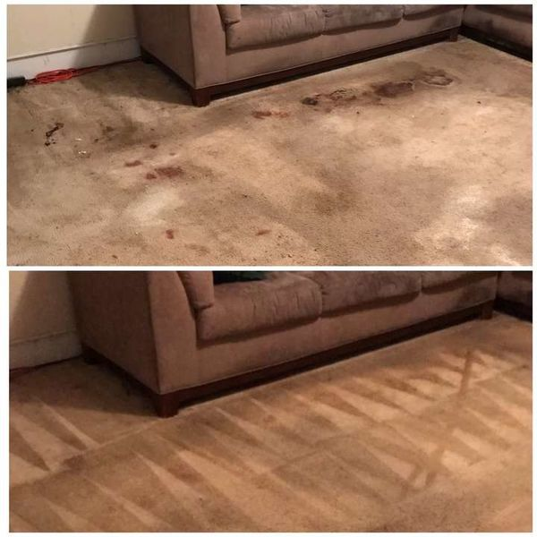 Before & After Carpet Stain Removal in Huntersville, NC (1)