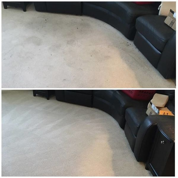 Before & After Carpet Cleaning in Cornelius, NC (1)