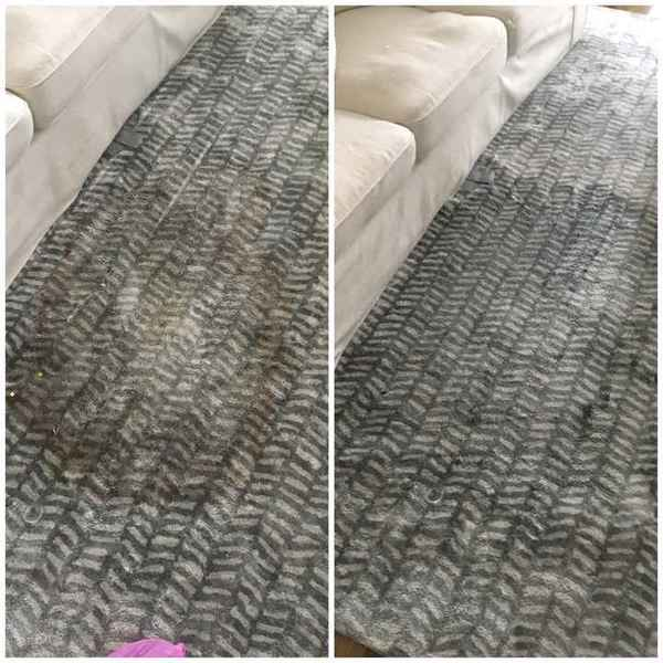 Carpet Stain Removal in Concord, NC (1)