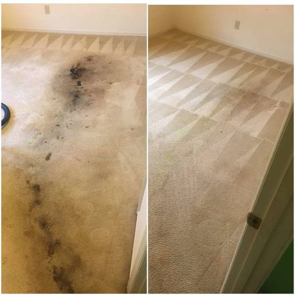 Carpet Stain Removal in Rock Hill, SC (1)