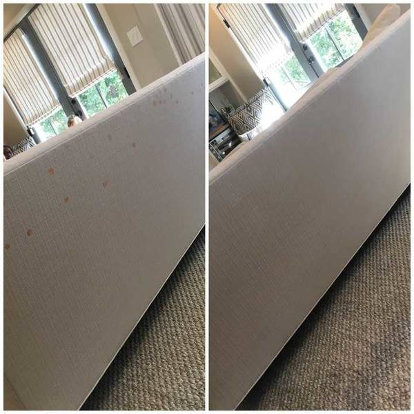 Upholstery Stain Removal in Charlotte, NC (1)