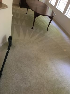 Carpet Cleaning in Charlotte, NC (1)